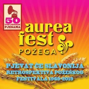 RAZNI IZVOĐAČI – RETROSPEKTIVA POŽEŠKOG FEST. 1969-2019